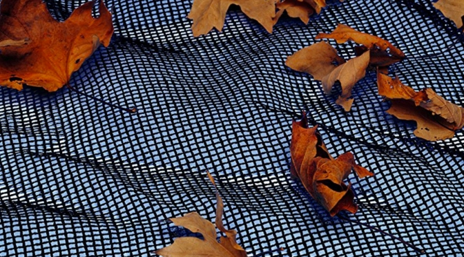 Tracy's Tips: Leaf Nets for Tarp Covers