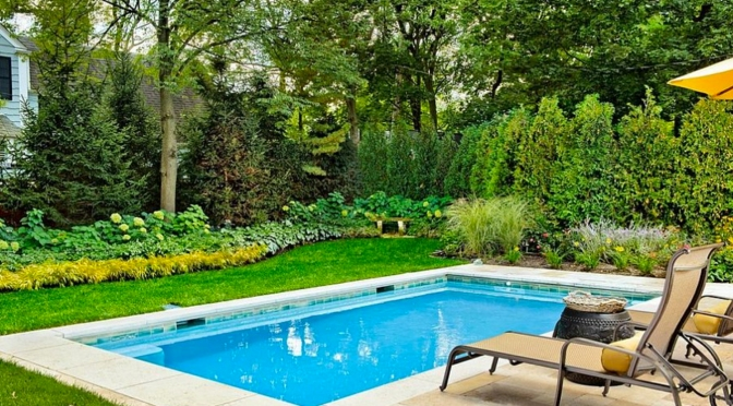 Go Green! We Don't Mean Your Pool Water.