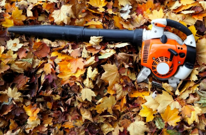 Tracy's Tips: Lighten Your Load with a Leaf Blower